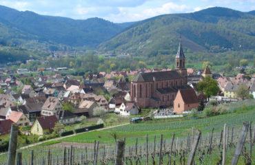 guywurth-alsaciette-vallee-munster-circuit-touristique