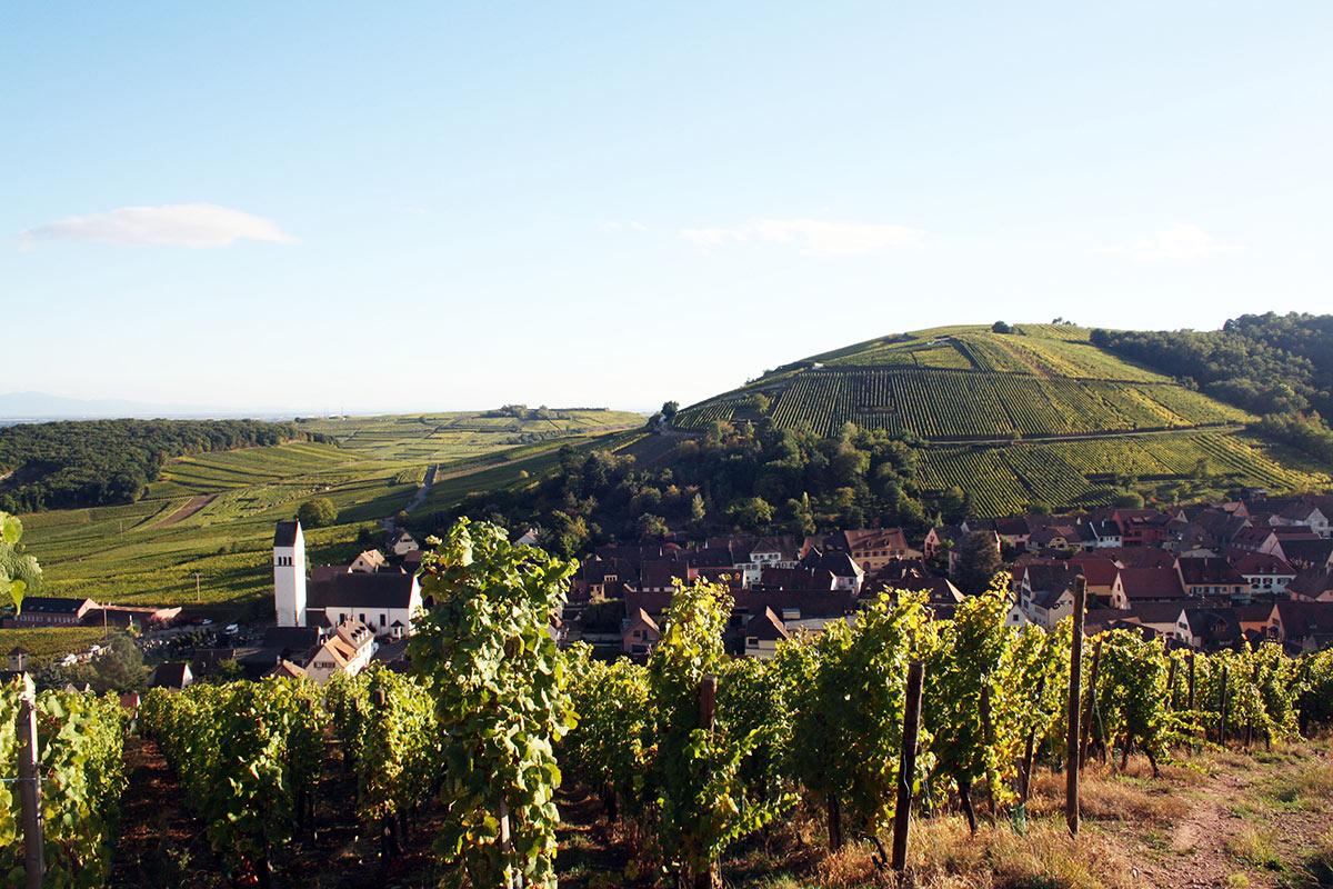 Super Circuit 'Spécialités Alsaciennes au long de la route des vins  VE93